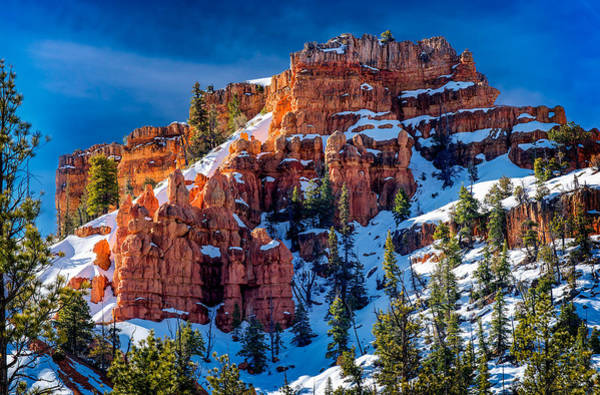 Photograph - Red Canyon Utah by Michael Ash