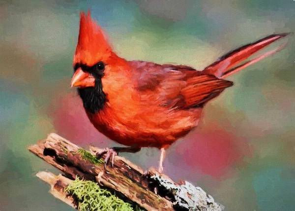 Digital Art - Red Cardinal by Charmaine Zoe