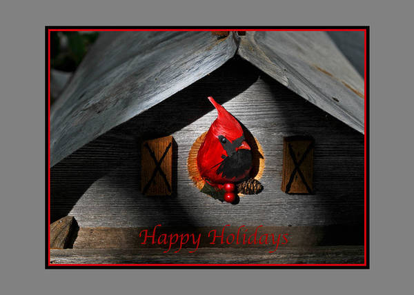 Photograph - Red Cardinal Happy Holiday Greeting Card by Ginger Wakem