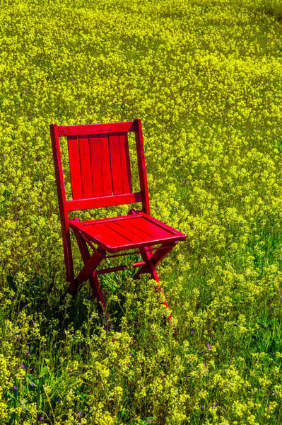 Wall Art - Photograph - Red Chair Amoung Wildflowers by Garry Gay