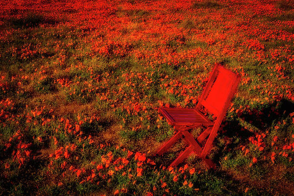 Wall Art - Photograph - Red Chair In Poppy Field by Garry Gay