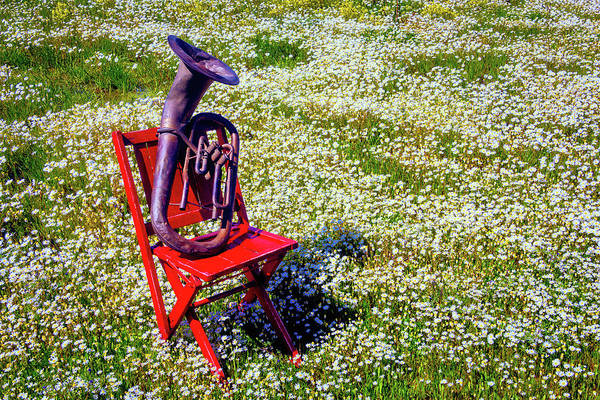 Wall Art - Photograph - Red Chair With Old Horn by Garry Gay