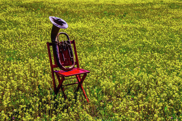 Wall Art - Photograph - Red Chair With Old Tuba by Garry Gay