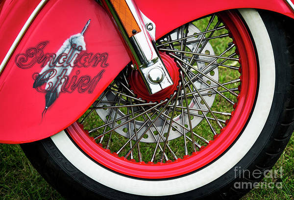 Wall Art - Photograph - Red Chief by Tim Gainey