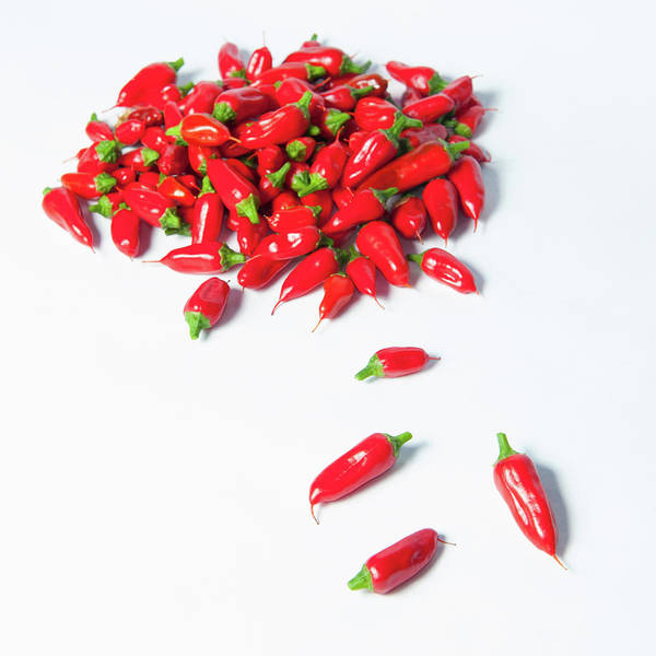 Photograph - Red Chillies by Helen Northcott