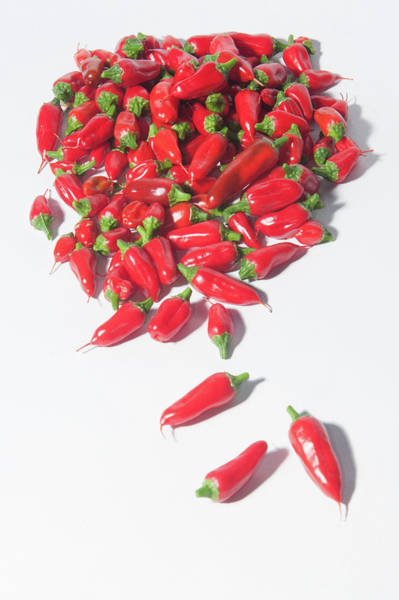 Photograph - Red Chillies II by Helen Northcott