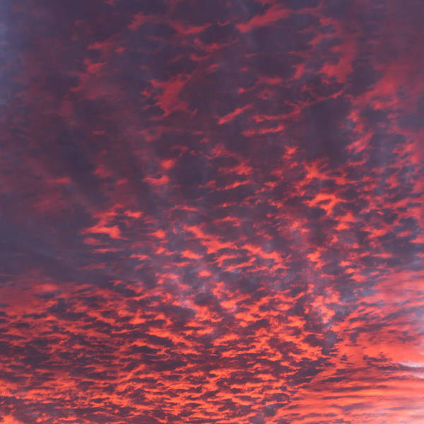 Photograph - Red Cloud Sky Square by Terry DeLuco