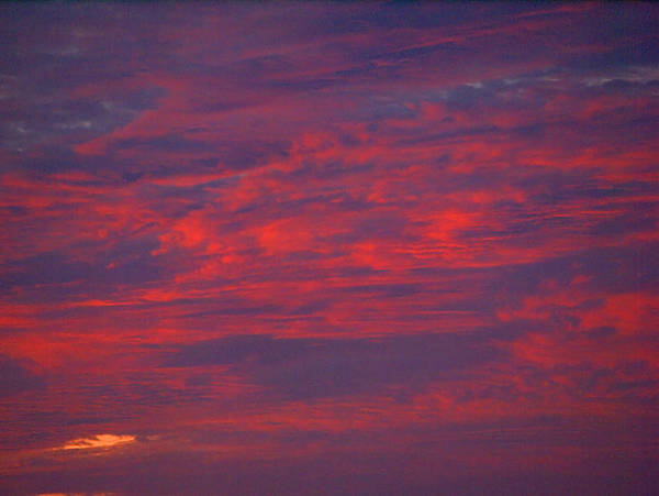 Photograph - Red Clouds by  Newwwman