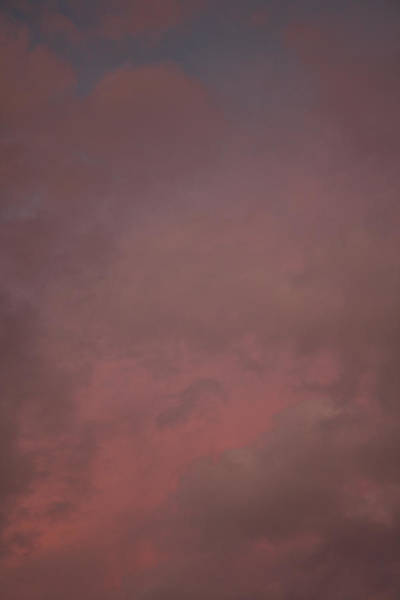 Photograph - Red Clouds V by Dylan Punke