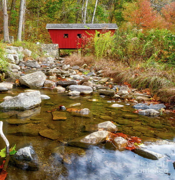 Wall Art - Photograph - Red Covered Bridge by DAC Photo
