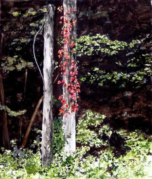 Red Creeper Art Print by Carla Dabney