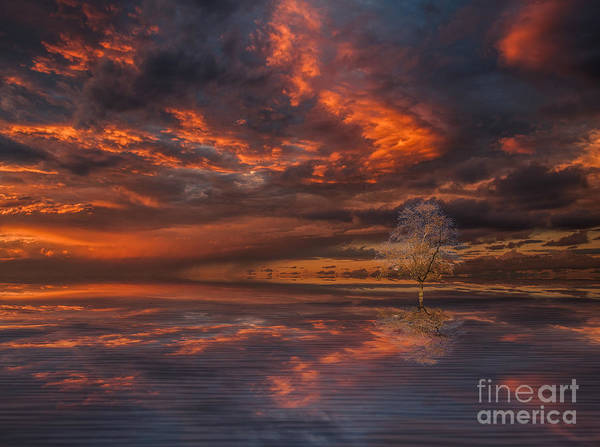 Queensland Digital Art - Red Darkness by Barbara Dudzinska