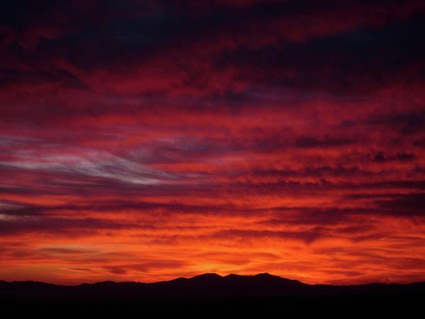 Photograph - Red Dawn by TM Schultze