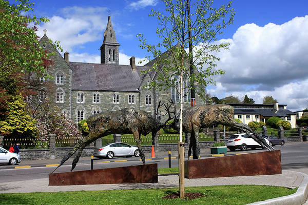 Gaelic Photograph - Red Deer Sculpture, Killarney, County Kerry, Ireland by Aidan Moran