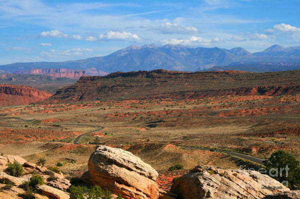 Wall Art - Painting - Red Desert With La Sal Mountains by Corey Ford