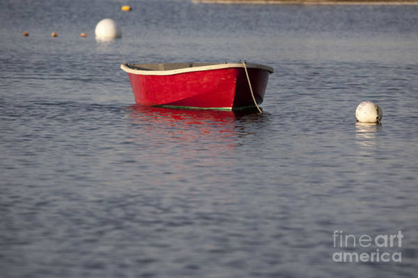 Photograph - Red Dingy - Rye Harbor New Hampshire Usa by Erin Paul Donovan
