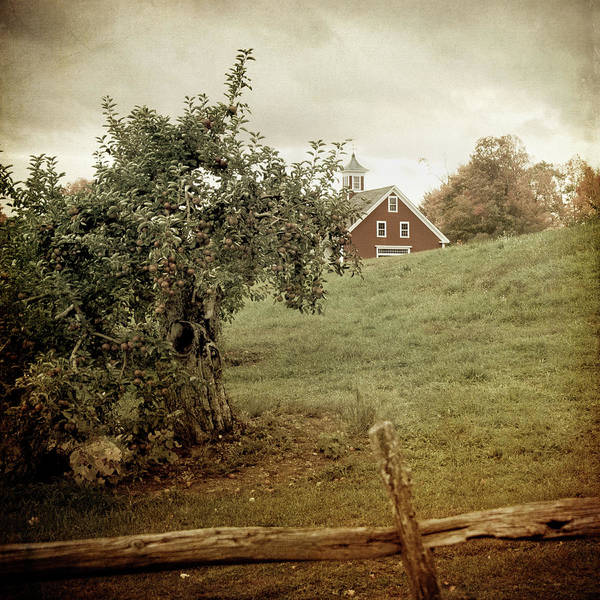 Photograph - Red Farmhouse On Apple Farm - Vintage Art by Joann Vitali