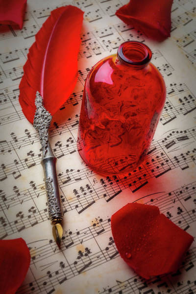 Wall Art - Photograph - Red Feather Pen And Bottle by Garry Gay