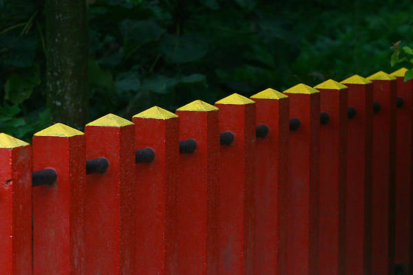Red Fence Art Print