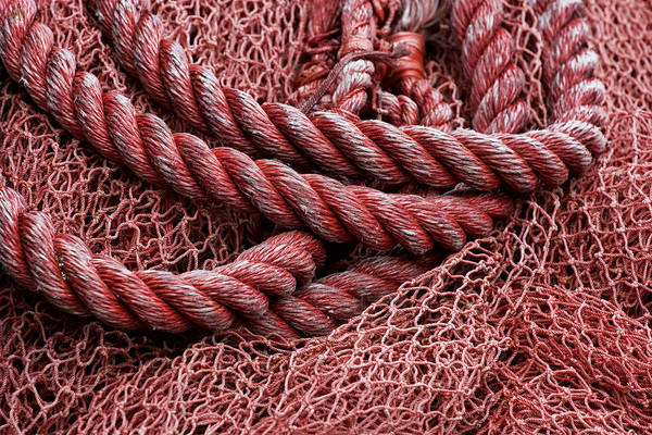 Wall Art - Photograph - Red Fishing Net Detail by Carol Leigh