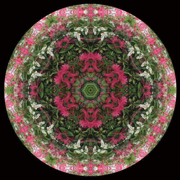 Red Flower Faces Kaleidoscope Art Print