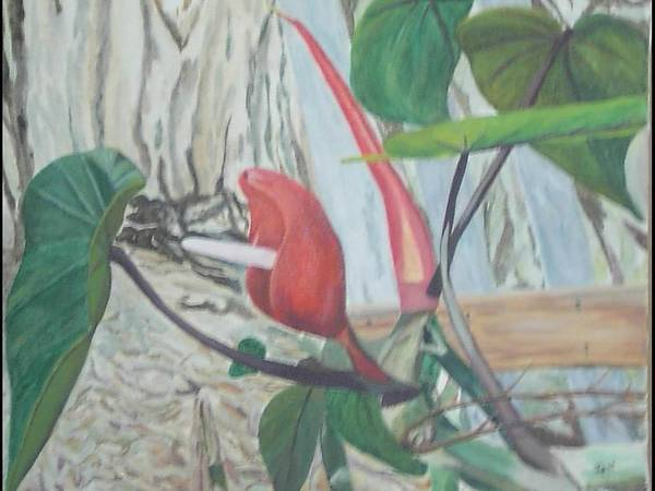 Wall Art - Painting - Red Flowering Vine by Hilda and Jose Garrancho