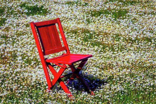 Wall Art - Photograph - Red Folding Chair With Daisies by Garry Gay