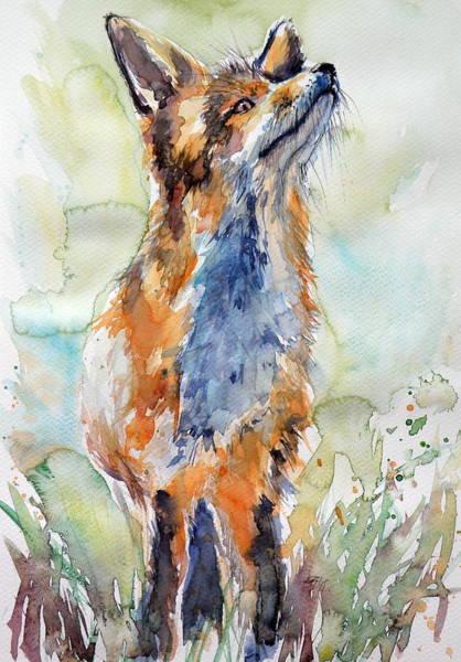 Wild Life Painting - Red Fox Listening by Kovacs Anna Brigitta
