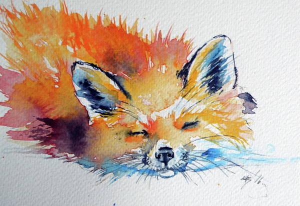 Wall Art - Painting - Red Fox Sleeping by Kovacs Anna Brigitta