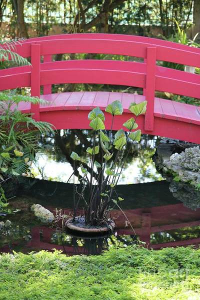 Wall Art - Photograph - Red Garden Bridge by Carol Groenen