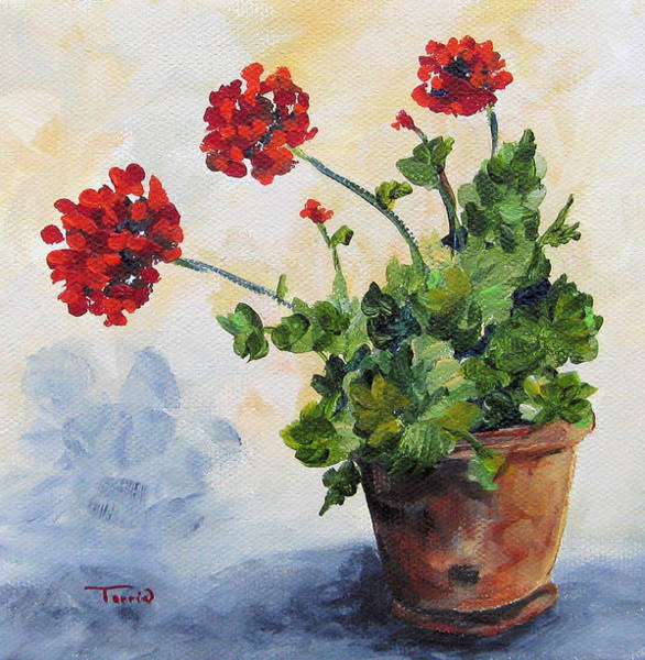 Flower Wall Art - Painting - Red Geraniums by Torrie Smiley