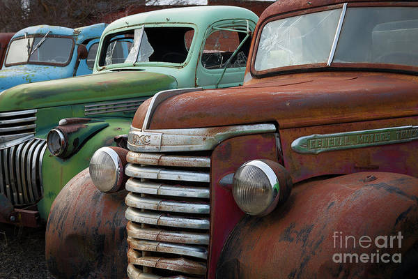 Wall Art - Photograph - Red Green And Blue by Idaho Scenic Images Linda Lantzy
