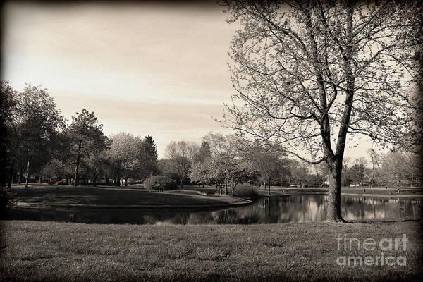 Photograph - Red Hammock In Franklin Park Sepia by Karen Adams