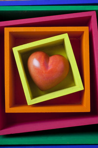 Compartments Photograph - Red Heart In Box by Garry Gay