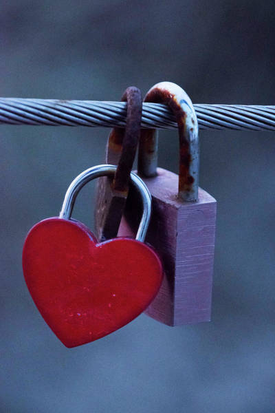 Together Forever Photograph - Red Heart Padlock by Mihaela Pater