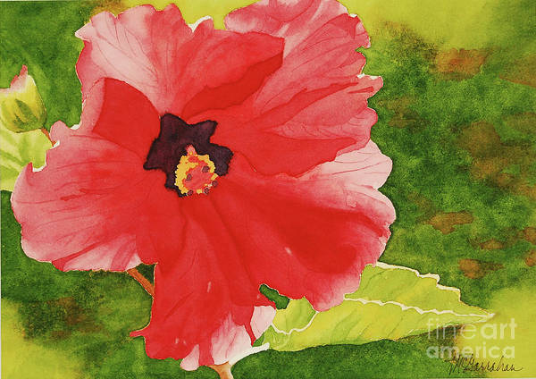 Wall Art - Painting - Red Hibiscus by Annette McGarrahan