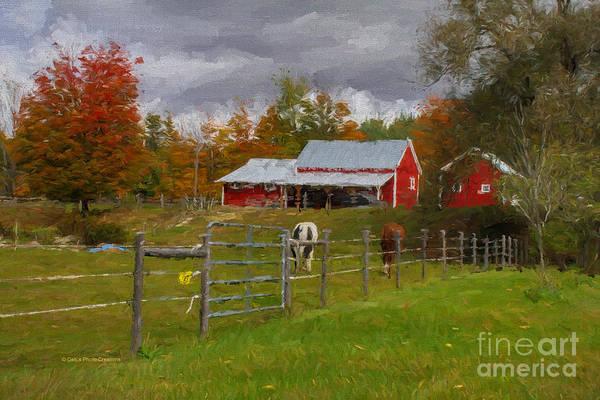 Painting - Red Horse Barn by Deborah Benoit