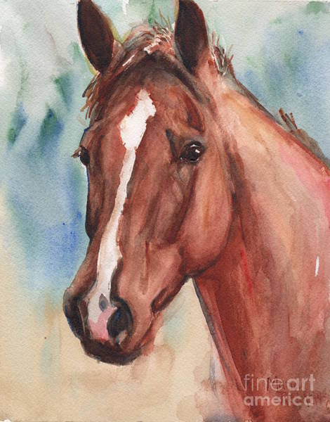 Aqha Painting - Red Horse In Watercolor by Maria's Watercolor