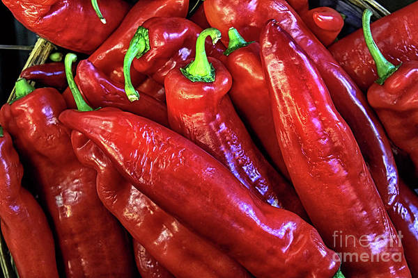 Photograph - Red Hot Chili Peppers by Carlos Diaz
