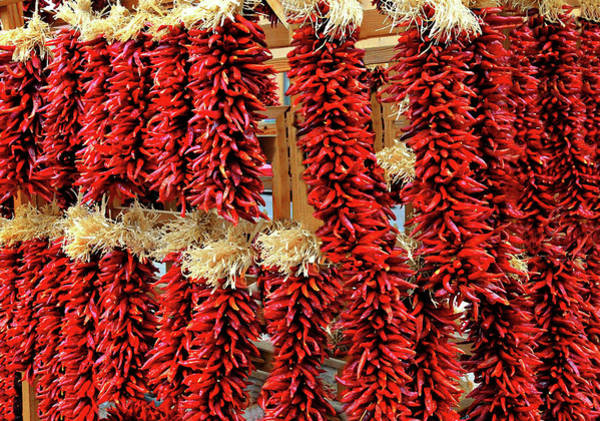 Wall Art - Photograph - Red Hot Chilis by Diana Angstadt