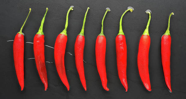 Wall Art - Photograph - Red Hot Peppers Panorama by Steve Gadomski