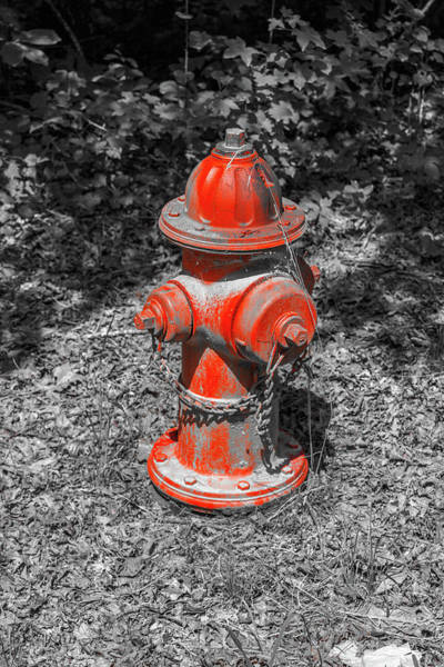Photograph - Red Hydrant In Selective Color by Doug Camara