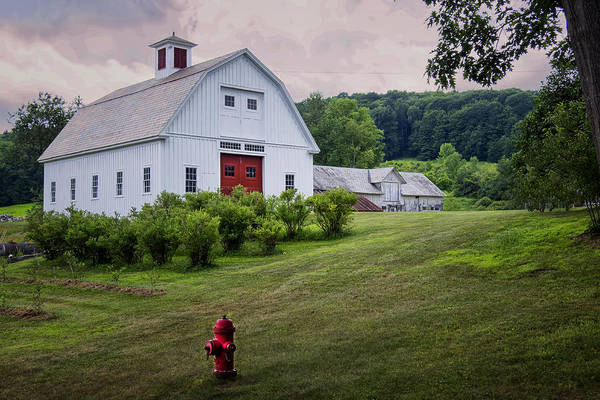 Photograph - Red Hydrant by Tom Singleton
