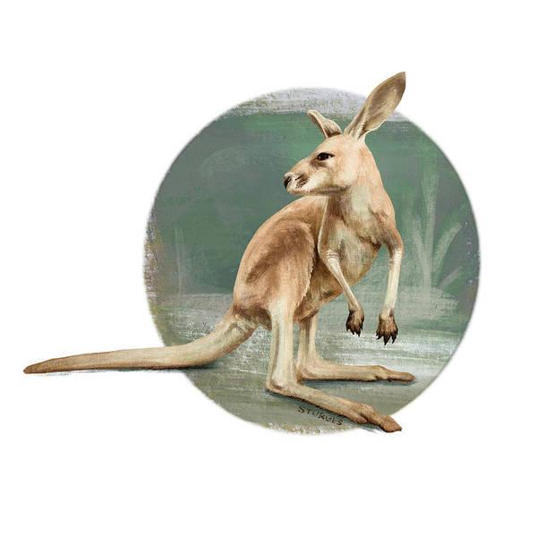 Kangaroo Wall Art - Digital Art - Red Kangaroo by Simon Sturge