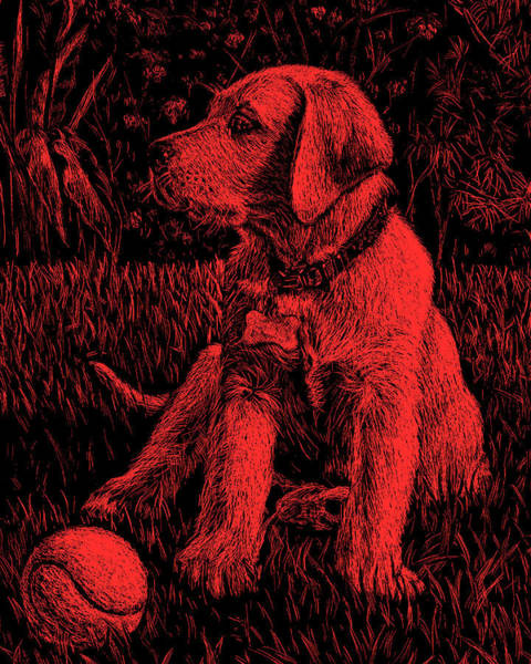 Painting - Red Labrador Puppy Dog by Irina Sztukowski
