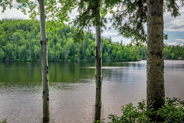 Photograph - Red Lake Through Trees by Keith Smith