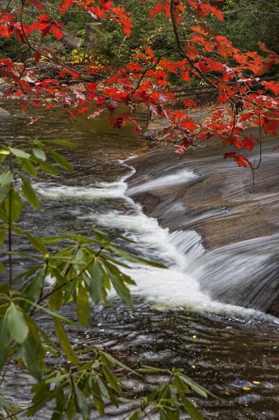 Photograph - Red Leaf Falls by Ken Barrett