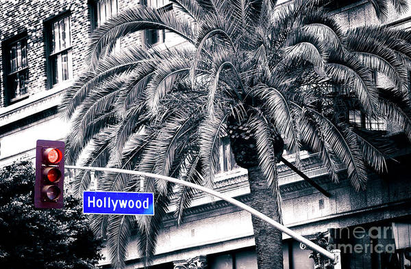 Photograph - Red Light In Hollywood Fusion by John Rizzuto