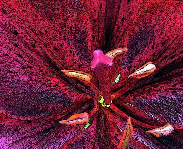 Wall Art - Photograph - Red Lily Fresco-posteredged by Janis Beauchamp