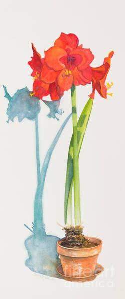 Red Amaryllis Painting - Red Lion by Sandra Neumann Wilderman